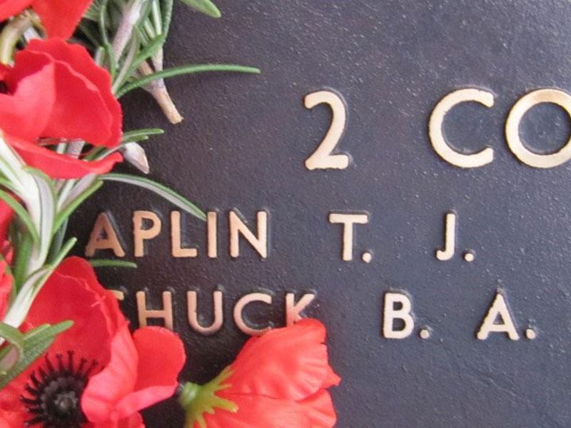 Private Timothy Aplin